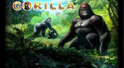 Gorilla Slot Casumo