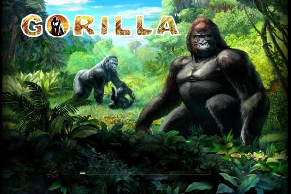 Slot Review: Gorilla Slot